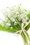 Flores del lirio de los valles en blanco Fotos de archivo libres de regalías