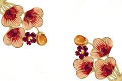 Flores del lirio del Rhinestone Foto de archivo libre de regalías