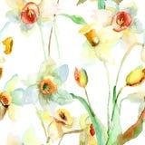Flores del narciso Foto de archivo