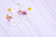 Flores del parche Foto de archivo libre de regalías
