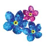 Flores del polígono Fotografía de archivo
