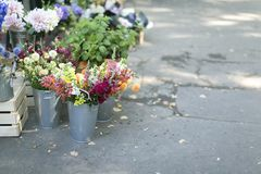 Flores del ramo f en floreros del metal Foto de archivo