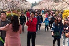 Flores del reloj de los turistas en el parque Foto de archivo libre de regalías