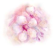 Flores del resorte stock de ilustración