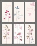 Flores del resorte de la tarjeta Foto de archivo