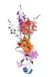 Flores del resorte en florero azul y blanco Fotos de archivo libres de regalías