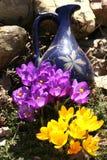 Flores del resorte en un jardín. Imagen de archivo