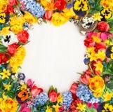 Flores del resorte y huevos de Pascua Tulipanes, narciso, jacinto y Fotografía de archivo libre de regalías