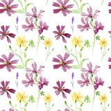 Flores del rosa salvaje y del amarillo Modelo botánico floral de la acuarela, hierba verde, celandine amarillo de la flor, semill Fotos de archivo libres de regalías