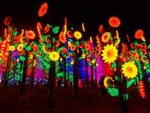 Flores del sol del LED Imagenes de archivo