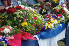 Flores del tributo foto de archivo libre de regalías