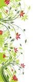 Flores del vector Fotos de archivo libres de regalías