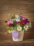 Flores del verano Foto de archivo libre de regalías