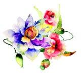 Flores del verano Imagen de archivo