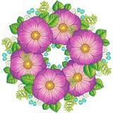 Flores del verano Elementos aislados vector Vector la imagen para la impresión en la ropa, materias textiles, carteles, invitati ilustración del vector