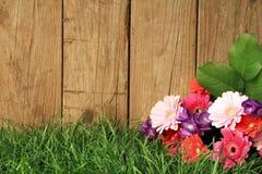 Flores delante de una cerca Imágenes de archivo libres de regalías