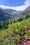 Flores delante del glaciar y del lago de Grinnell en Parque Nacional Glacier Fotografía de archivo libre de regalías
