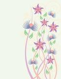 Flores delicadas ilustração royalty free