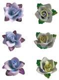 Flores delicadas Stock de ilustración