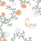 Flores delicadas en un fondo blanco Imagen de archivo