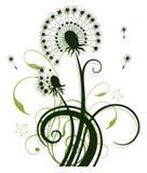 Flores, dente-de-leão Imagens de Stock Royalty Free