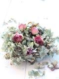 Flores descoloradas bonitas Fotografía de archivo libre de regalías