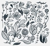 Flores desenhadas mão Fotos de Stock