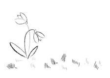 Flores desenhadas mão da mola imagem de stock
