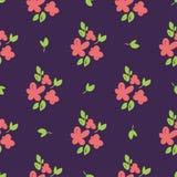 Flores desenhados à mão bonitas simples foto de stock royalty free