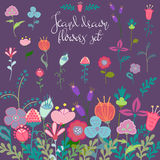 Flores dibujadas mano fijadas Imagen de archivo libre de regalías