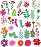 Flores dibujadas mano y elementos florales Imagen de archivo