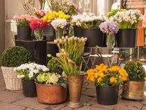 Flores diferentes que vendem fora de um florista imagem de stock