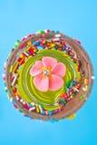 Flores do açúcar em um vidro com geléia Imagens de Stock Royalty Free
