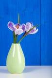 Flores do açafrão em um vaso Imagens de Stock Royalty Free