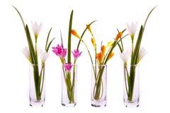 Flores do açafrão nos frascos de vidro Fotografia de Stock