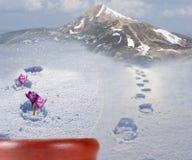 Flores do açafrão que saem da neve Natureza na bola de vidro Imagens de Stock Royalty Free
