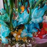 Flores do amor Imagens de Stock Royalty Free