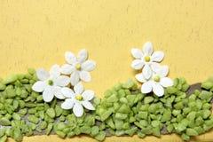 Flores do artesanato em um cartão Fotografia de Stock
