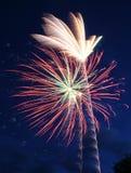 Flores do céu Fotos de Stock Royalty Free