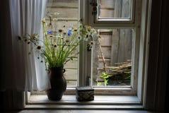 Flores do campo em um jarro Imagens de Stock Royalty Free