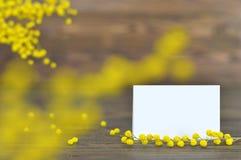 Flores do cartão e da mimosa do dia de Women's Fotografia de Stock Royalty Free
