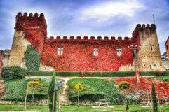 Flores do castelo Fotografia de Stock