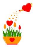 Flores do coração no potenciômetro Fotografia de Stock
