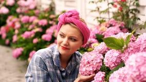 Flores do cosmos no jardim com por do sol Flores bonitas do jardim A mulher importa-se com flores cor-de-rosa em um país filme