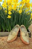 Flores do Daffodil e sapatas de madeira Foto de Stock