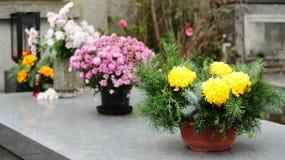 Flores do funeral Imagens de Stock