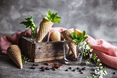 Flores do gelado e da mola de chocolate Foto de Stock