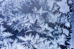 Flores do gelo no vidro - textura Imagens de Stock Royalty Free