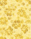 Flores do hibiscus do Grunge Fotos de Stock