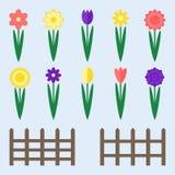 Flores do jardim ajustadas Imagem de Stock Royalty Free